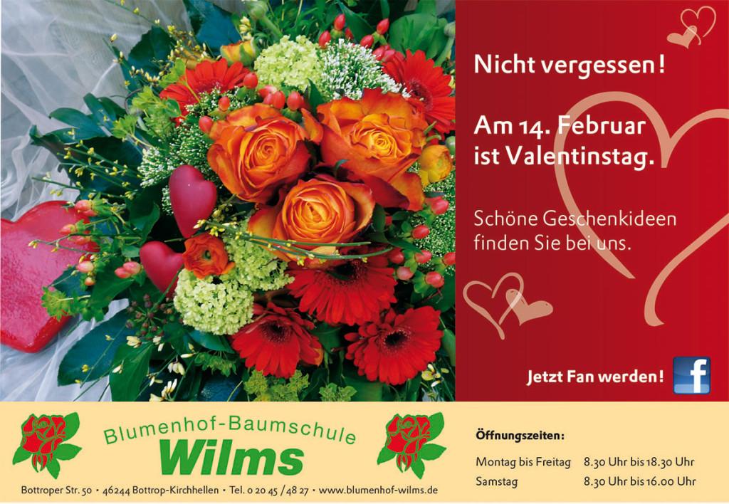 wilms_152x105_0214