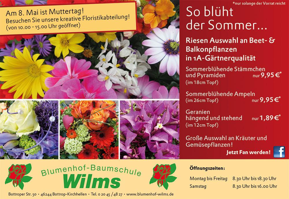 wilms_152x105_0515
