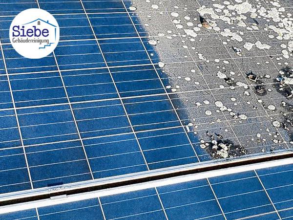 Foto Solar- und Photovoltaikreinigung  Bottrop, Kirchhellen, Wesel, Voerde, Rheinberg, Moers, Raesfeld, Hamminkeln, Kamp Lintfort, Rhede, Borken